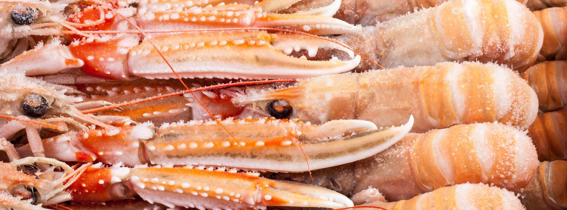 Nieuws - Murko Seafood