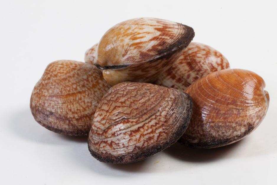 Amandes - Murko Seafood