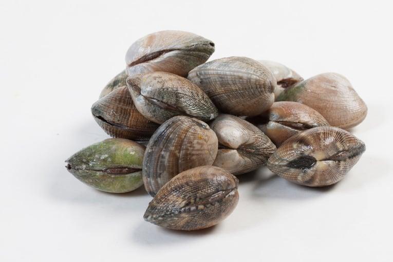Vongole veracie - Murko Seafood
