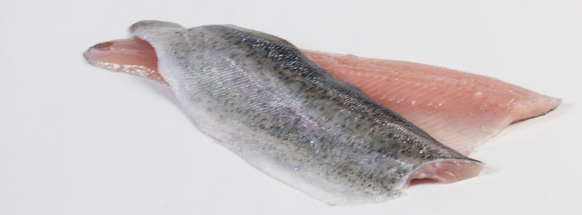 Forel - Murko Seafood