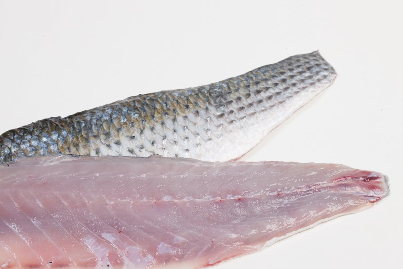 Harder - Murko Seafood