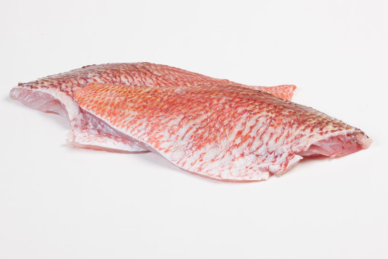 Roodbaars - Murko Seafood