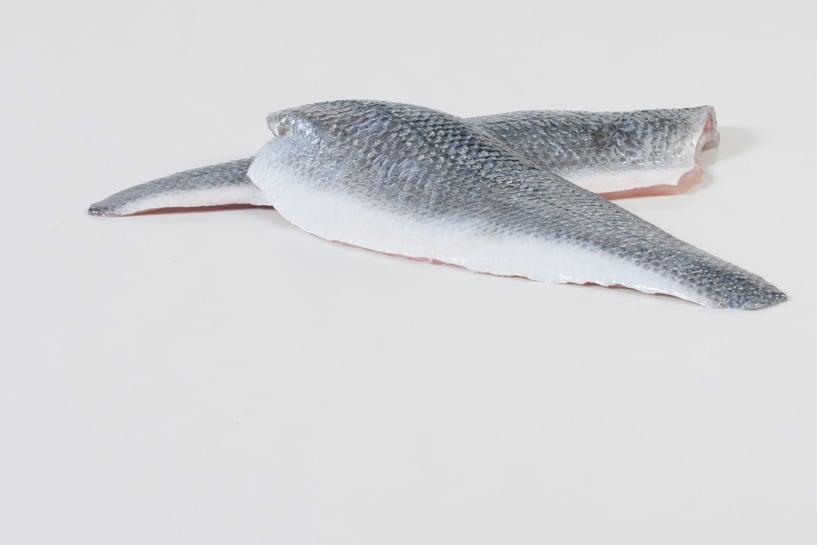 Zeebaars - Murko Seafood